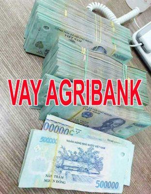 vay tiền Agribank