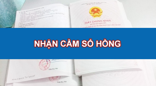 tim-hieu-ky-thong-tin-nguoi-ban-cung-cap-ve-so-hong